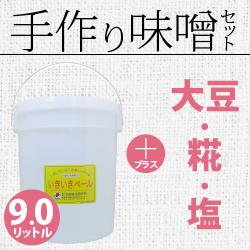 手作り味噌セット9.0リットル